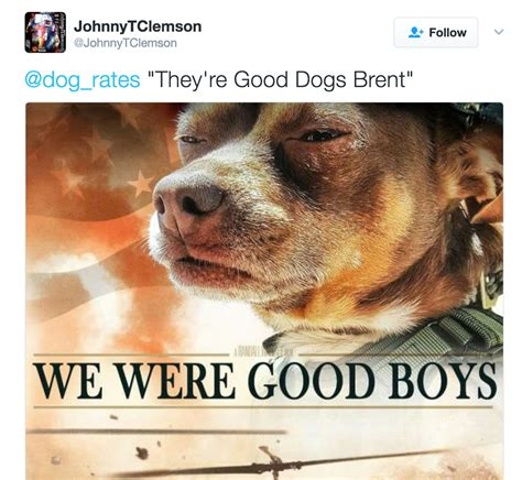they re dogs brent we were boys they re dogs brent your meme