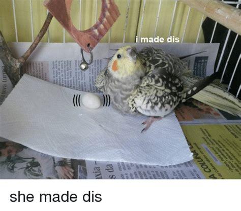 I Made Dis Meme - 25 best memes about i made dis i made dis memes
