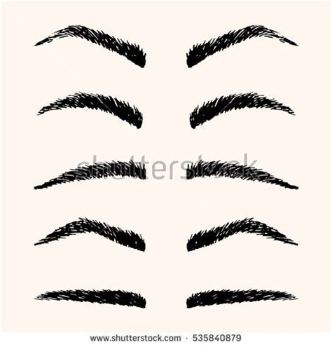 template for eyebrows types brows vector illustration template stock vector