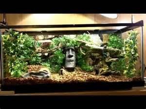 ball python awesome terrarium setup hd youtube