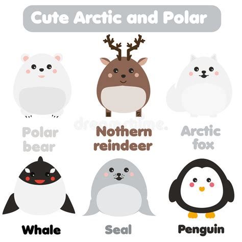 cute animals in boats kids design elements set stock cute kawaii arctic and polar animals children style