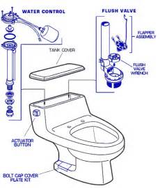 Grohe Bathroom Faucets Parts American Standard 2037 100 Toilet Parts