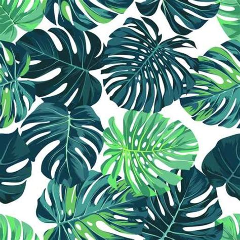 Tree Wall Murals vector seamless pattern with green monstera palm leaves on