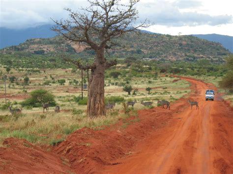 Safitri Syari tsavo east nationalpark