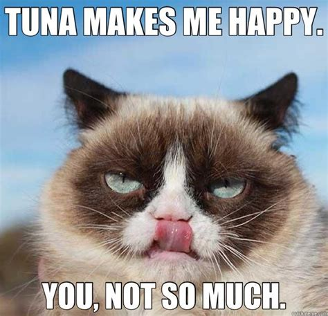Grumpy Cat Meme Happy - tuna makes me happy cat meme cat planet cat planet