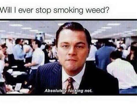 Leo Dicaprio Meme - leonardo dicaprio weed memes weed memes