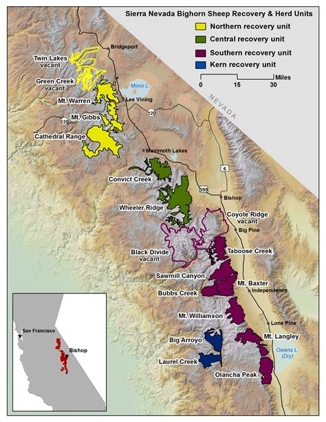 nevada mountains map nevada bighorn sheep recovery program california department of fish and wildlife