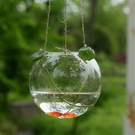 arrival crystal goldfish bowl hydroponics vase