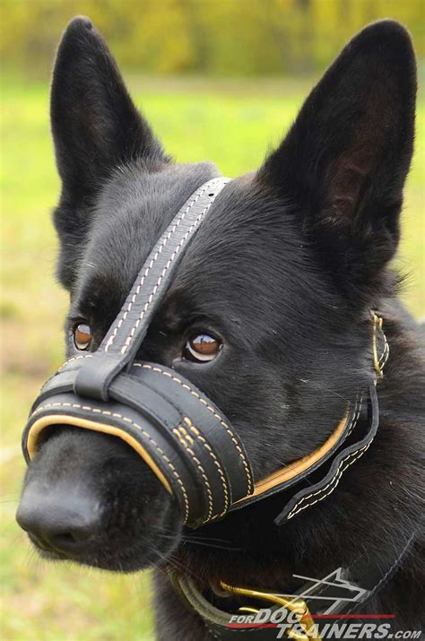 muzzle for dogs get nappa padded leather anti bark muzzle for comfortable walking