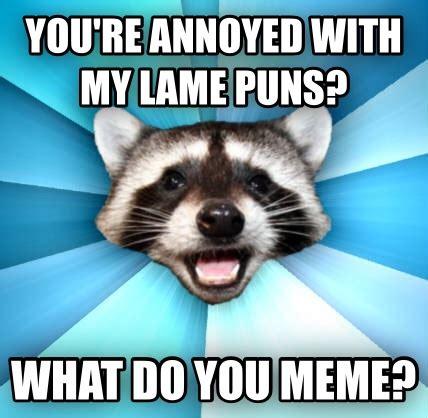 Lame Meme - livememe com lame pun coon
