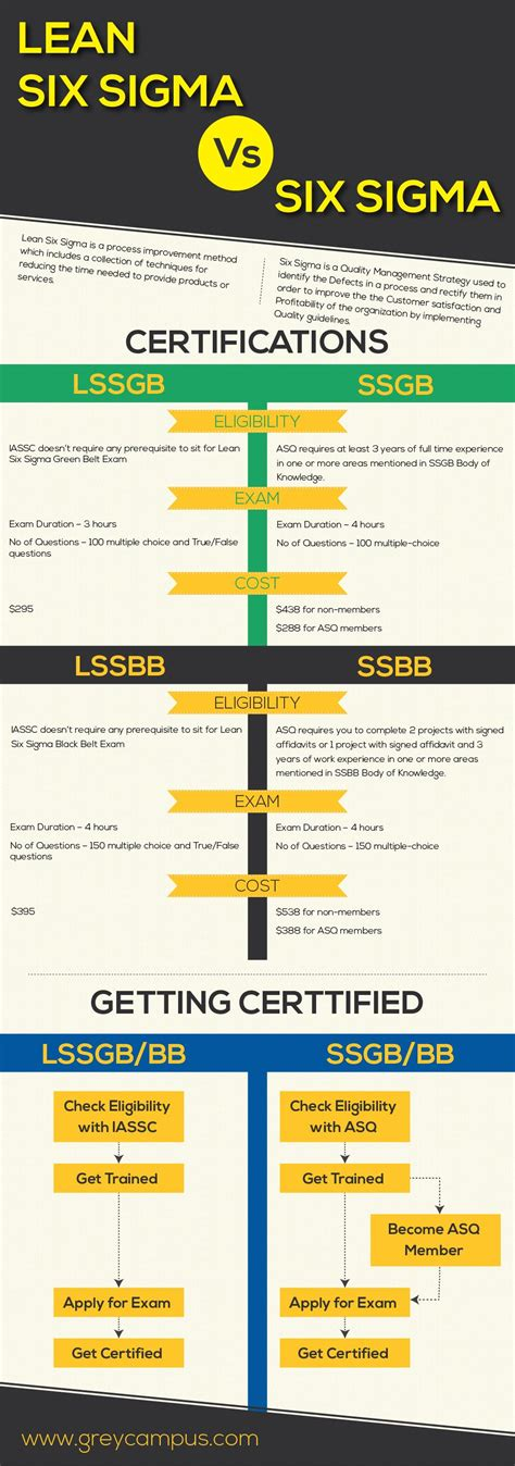 Six Sigma Versus Mba by Lean Six Sigma Vs Six Sigma Management Project