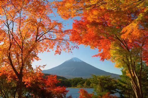 in japanese japan photo workshop