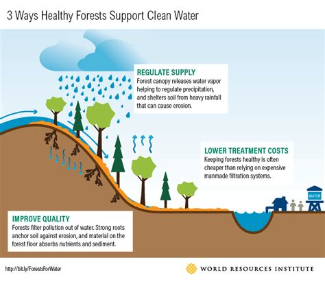when improving america s infrastructure don t forget forests world resources institute