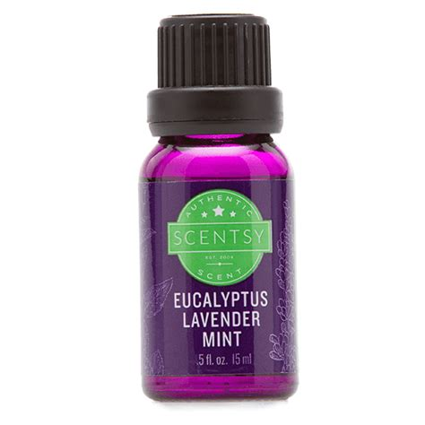 Review Bliss Eucalyptus Smoother by Eucalyptus Lavender Mint 100