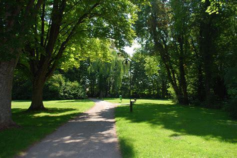 images landscape tree nature forest path