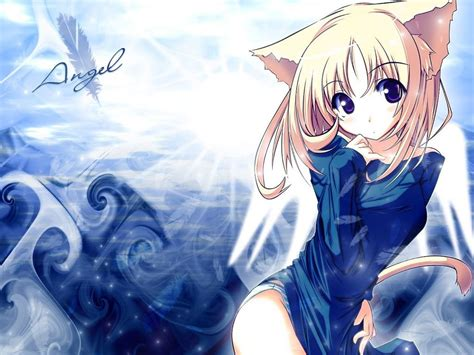 wallpaper cute anime cat anime cat girl wallpapers 34 wallpapers adorable