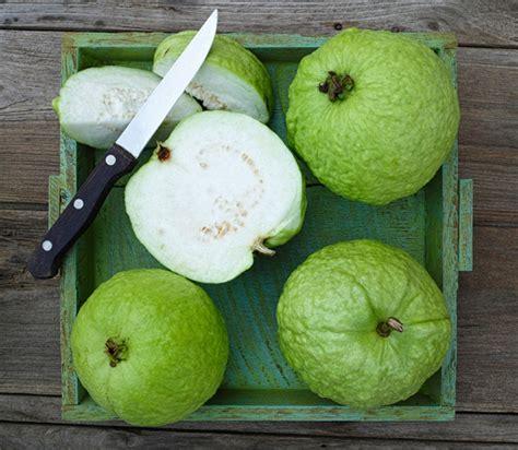 thai guava brooks tropicals