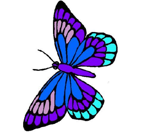 imagenes de mariposas a color fotos de mariposas coloreadas imagui