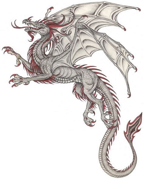 european dragon tattoo designs european search dragons and their hoard