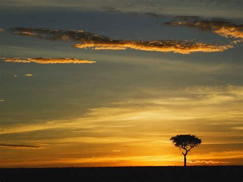 imagenes naturales simples travel trip journey masai mara kenya