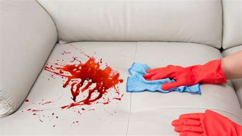 remove red wine stain from couch how to remove a stain from a sofa