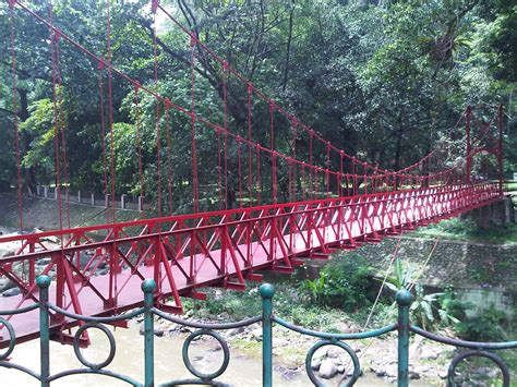 Lu Gantung Jalan Rute Keliling Kebun Raya Bogor Yang Tidak Melelahkan