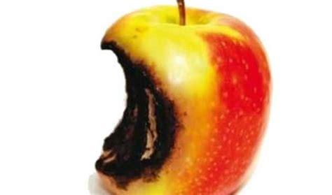 permesso di soggiorno trento trento permessi di soggiorno per raccogliere mele vox