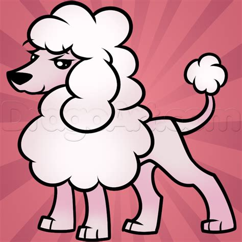 how to a poodle how to draw a poodle step by step pets animals free drawing tutorial