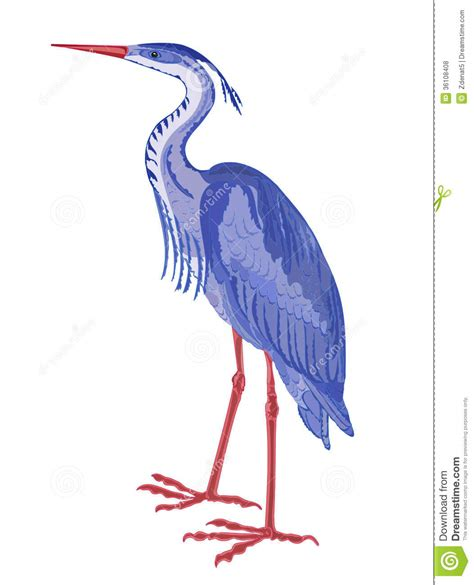 wading birds clipart clipground