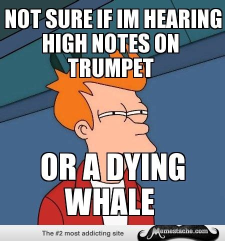 Trumpet Player Memes - 87 best band memes images on pinterest band nerd