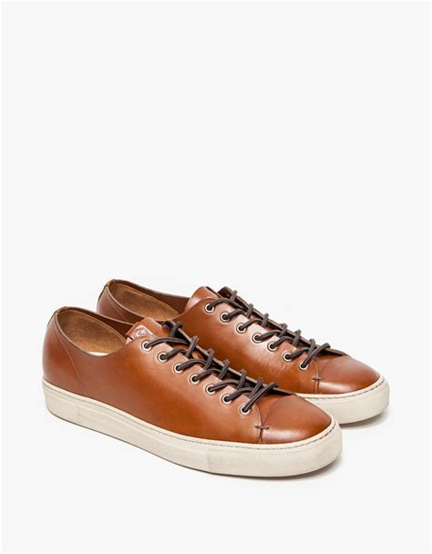 buttero tanino low leather sneaker in brown for lyst