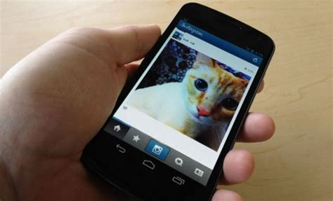 How To Search On Instagram Without An Account How To View Instagram Profiles Photos Without Following