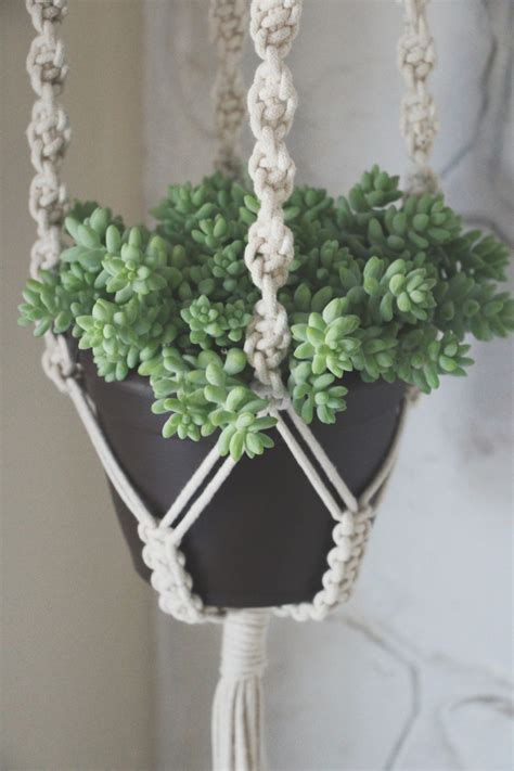 Macrame Plant Holder Tutorial - our giveaway macrame plant hangers plant hangers
