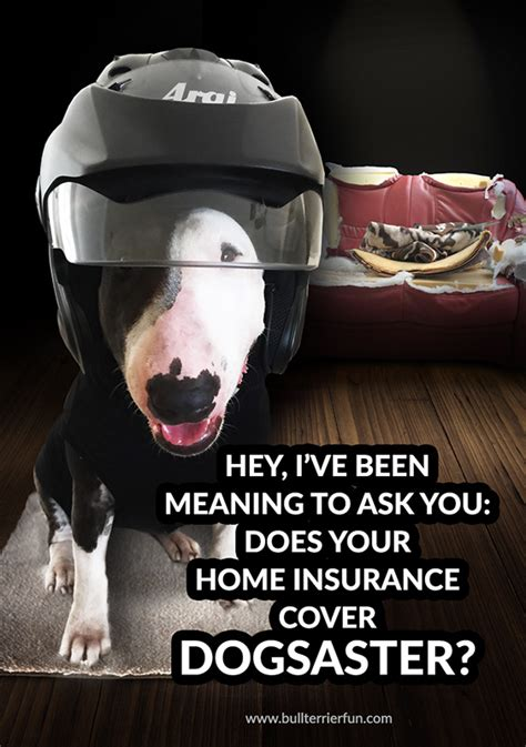 what does house contents insurance cover what does home insurance cover ideaforgestudios