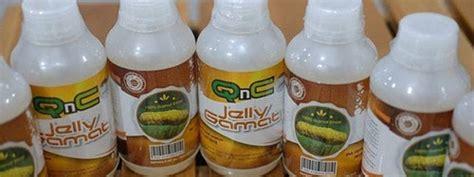 Qnc Jelly Gamat Gresik qnc jelly gamat qnc jelly gamat original murah hanya
