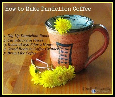 Dandy Liver Detox Tea Side Effects by Best 20 Dandelion Coffee Ideas On Edible