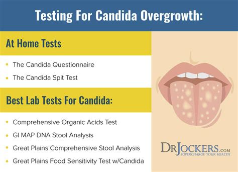Stool Test For Candida Overgrowth by Candida Overgrowth Best Home Lab Tests Drjockers
