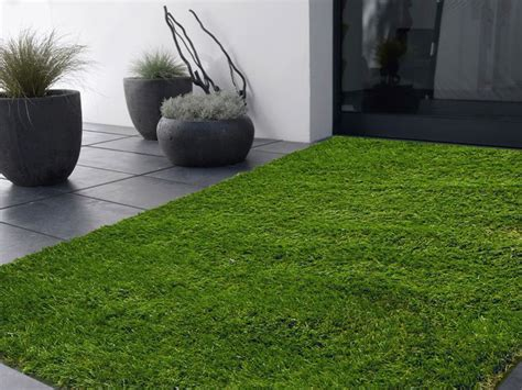 indoor grass 39 best artificial grass garden landscaping images on artificial turf