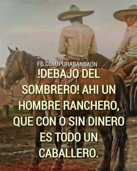 imagenes perronas de jalisco 1000 ideas about sombreros charros on pinterest charro