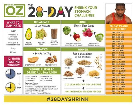 Dr Oz Belly Detox by Here Is The Eagerly Anticipated Dr Oz 28 Day Shrink Your