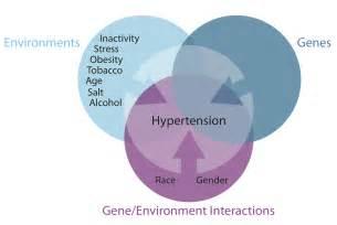 Is high blood pressure what causes high blood pressure caroldoey