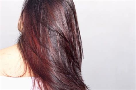 blonde and burgundy high and low lights for short ladies hairstyles burgundy lowlights loveeeee for my hair stylist