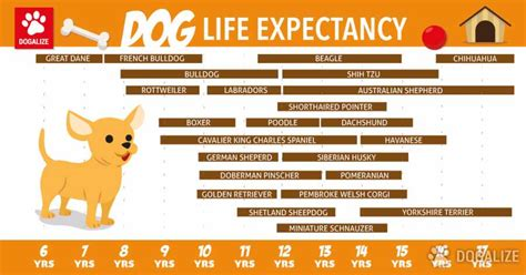 dogs span expectancy dogalize