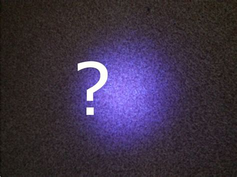 cat urine black light why does my uv light not make urine glow