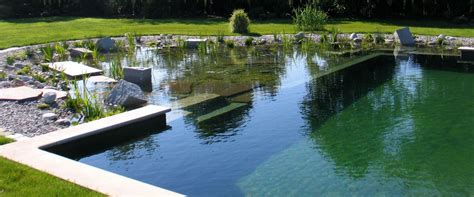 natural swimming pools ecohome