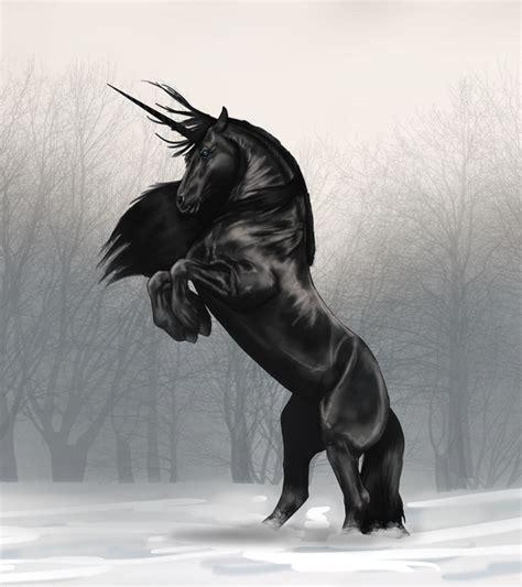 The Black Unicorn black unicorn by darkshadowlights on deviantart