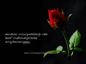 Best friendship quotes malayalam