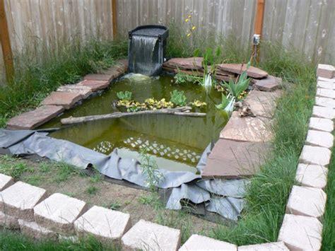 turtle ponds for backyard pin by kim sonderman on outside living pinterest