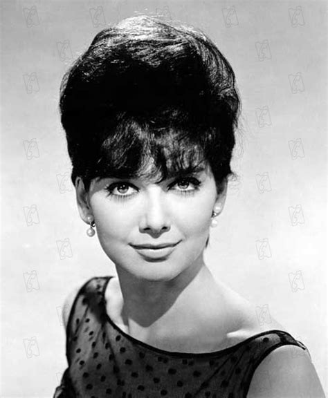 suzanne pleshette hairstyles 141 best images about suzanne pleshette on pinterest 19