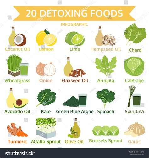 A To Z Detoxing by Twenty Detoxing Foods Info Graphic Flat Stock Vector